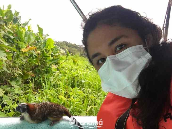 A Titi Monkey at monkeys island