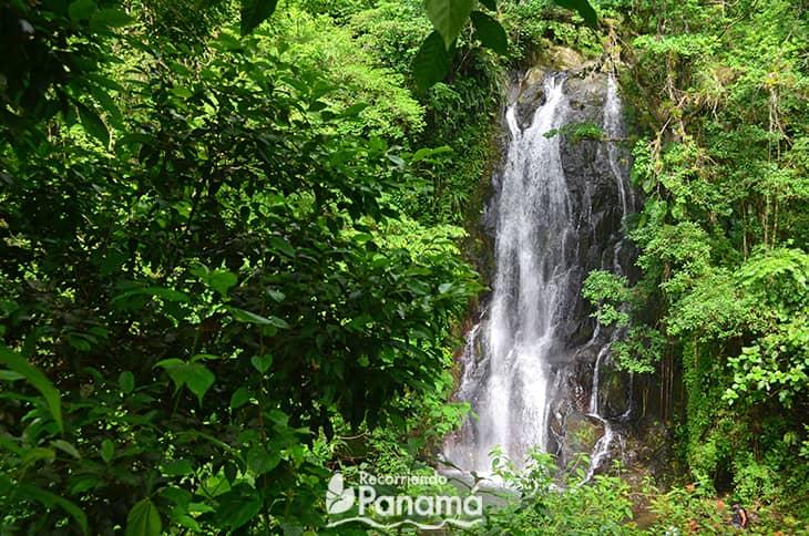 Waterfalls No 2.