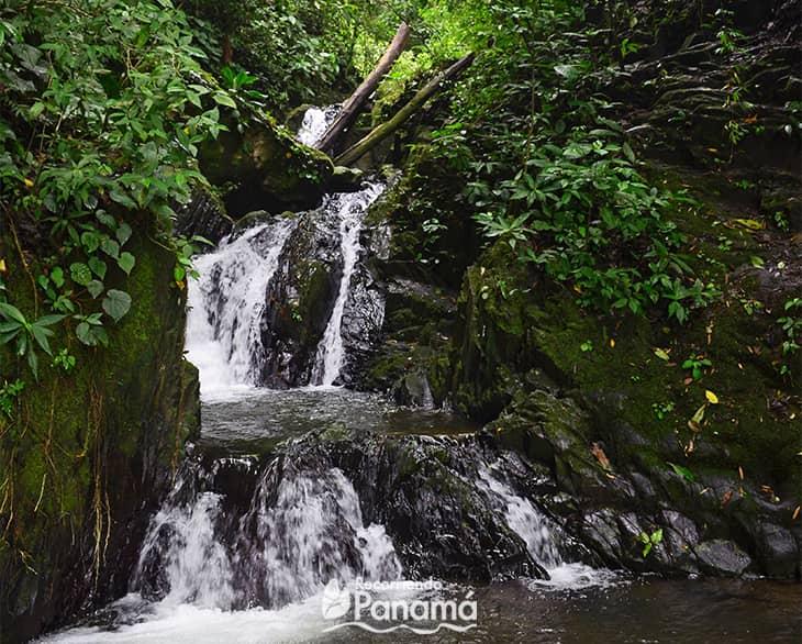 Waterfalls No.7.
