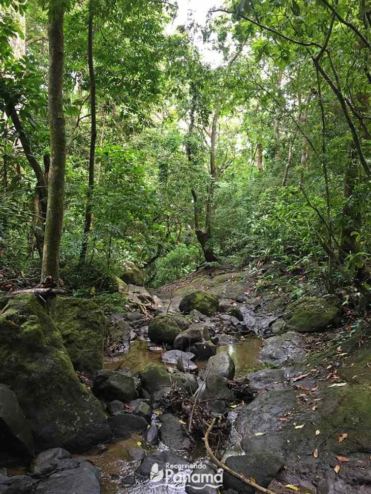 río en el sendero.