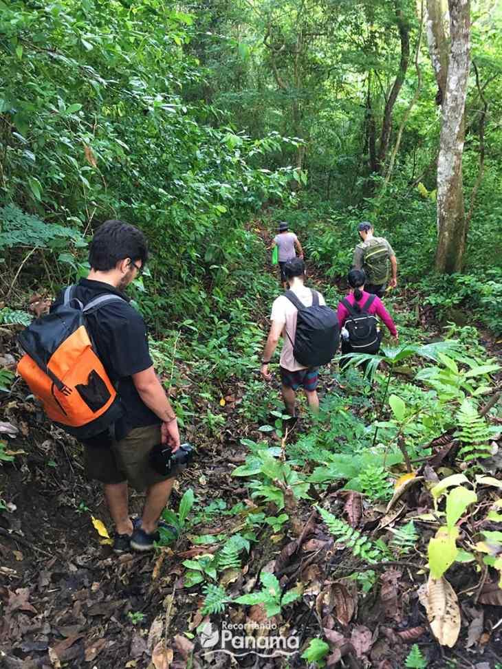 Buena Vista- Chicá trail