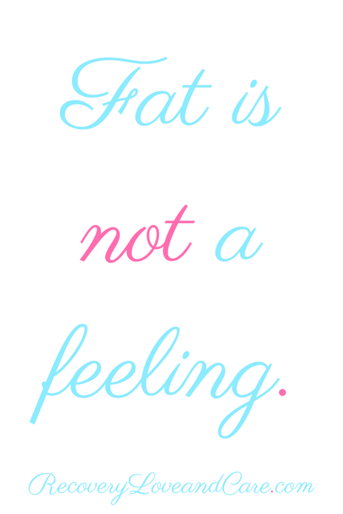 Fat Is Not a Feeling!!