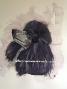'Crystal' poodle in watercolour A3 140lb cold press
