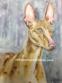 Sicilian greyhound on handmade claybord and watercolour. A3