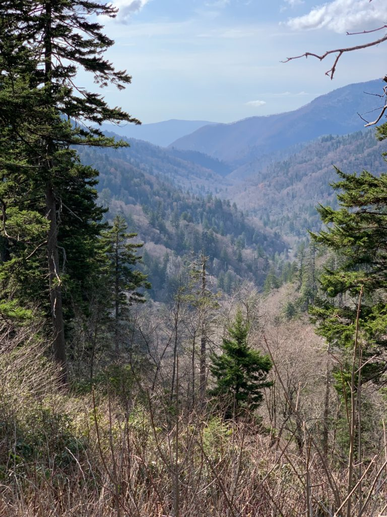 The Great Smoky National Park is the perfect place for RV camping!