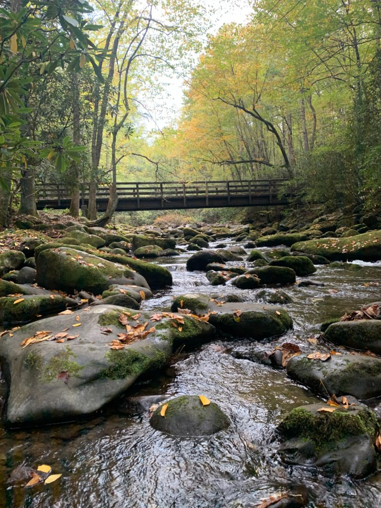 Hiking, fishing, and white water rafting are just some of the activities you can enjoy while RV camping in the Smoky Mountains