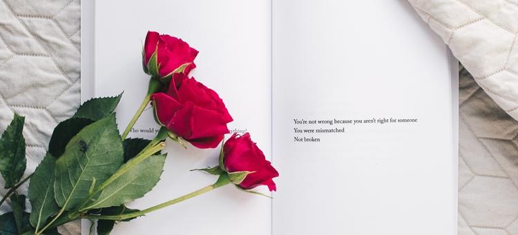 バラとメッセージ