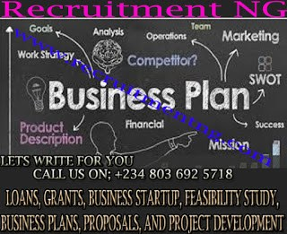 Writing Business Plans/Business Development/Feasibility Writers/Startup