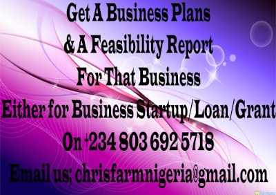 Personal Productivity, Business Plans And Feasibility