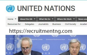 Assistant Livelihood Officer at the United Nations