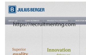 Internal Service Engineer at Julius Berger