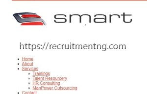 Sales Executives at Smart Partners Consulting