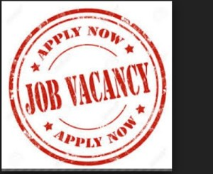 Hotel Manager at Mart Spectrum Nigeria Limited
