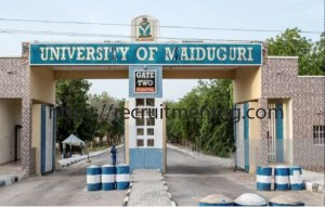 2018/2019 UTME Maiduguri Admission list