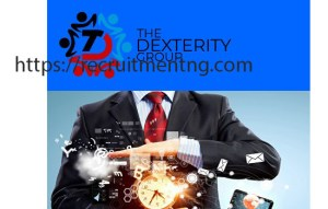 Newspaper Planner / Graphic Artist at the Dexterity Group