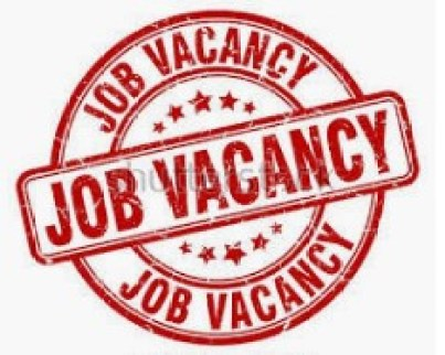 Technical Officer (Health & Nutrition Services) at Achieving Health Nigeria Initiative