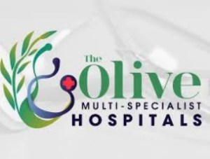 Accountant at Olive Multi-specialist Hospitals