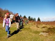 Outdoor Grayson Highlands