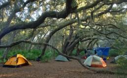 Stafford camping