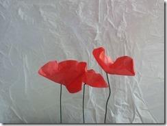 10 coquelicot fil de fer papier de soie DIY