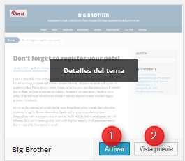 Wordpress-Seleccion de tema