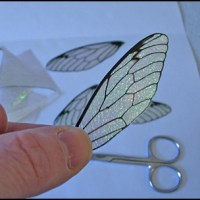 How to make iridescent Fairy wings