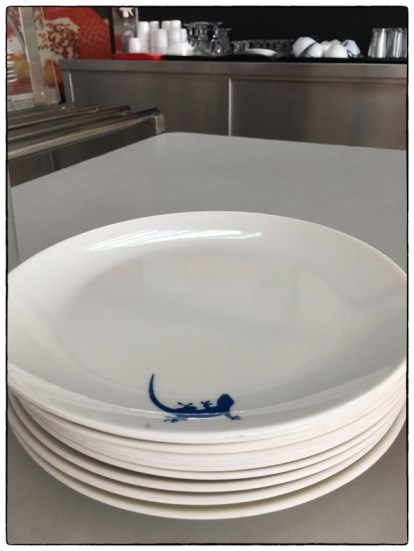 "New ""gecko"" plates at OSC."