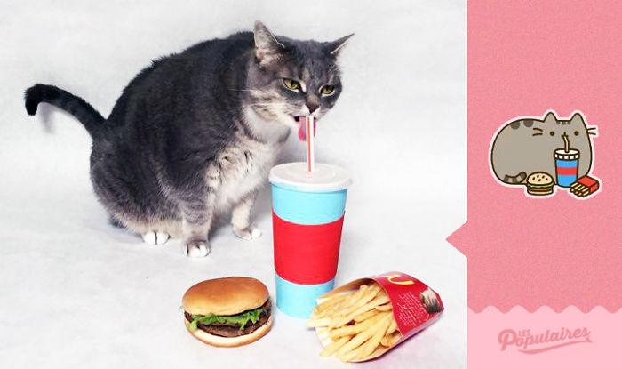 Hombre recrea los stickers de Pusheen Cat con su gato