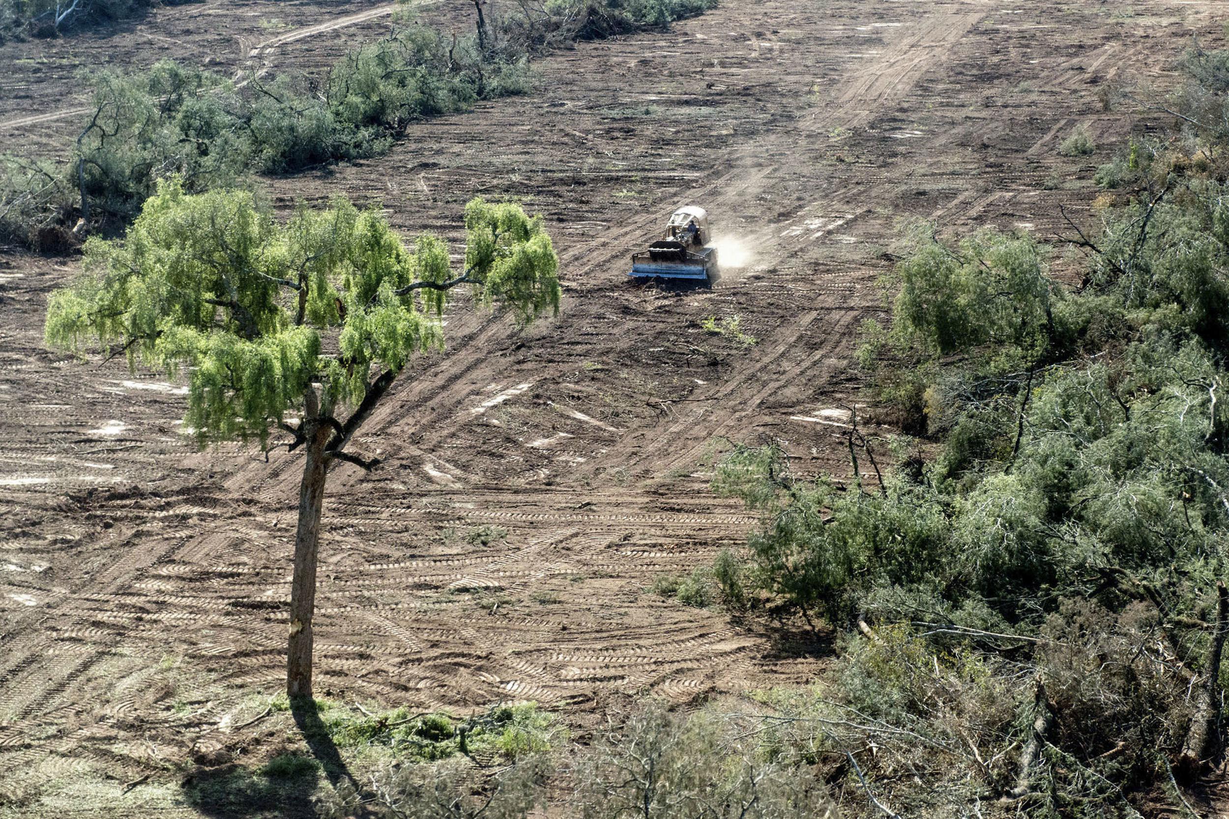 Deforestacion2