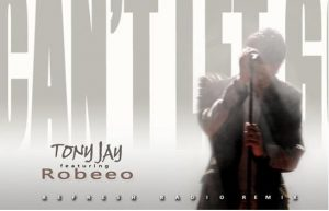 REMIX - TonyJay feat. Robeeo - Can't Let Go