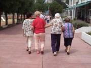 Caminatas en buena compañía