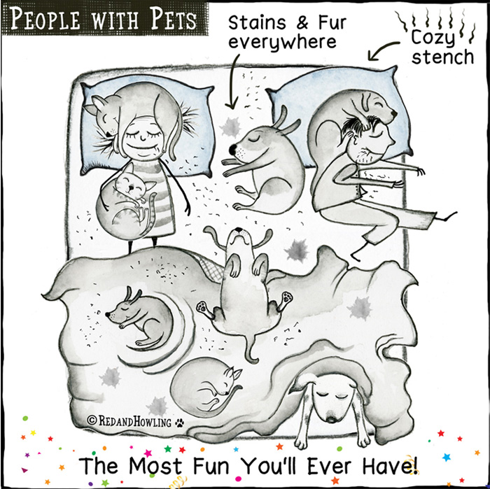 PetsNoPets02.jpg