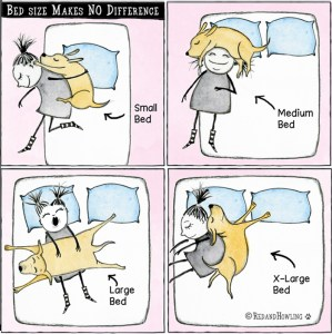 Bed Size Makes No Difference