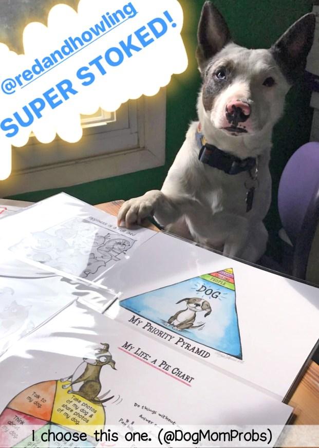 @DogMomProbs pup's favorite print