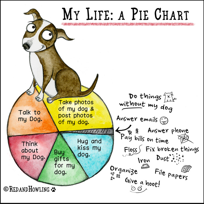 My Life: a Pie Chart