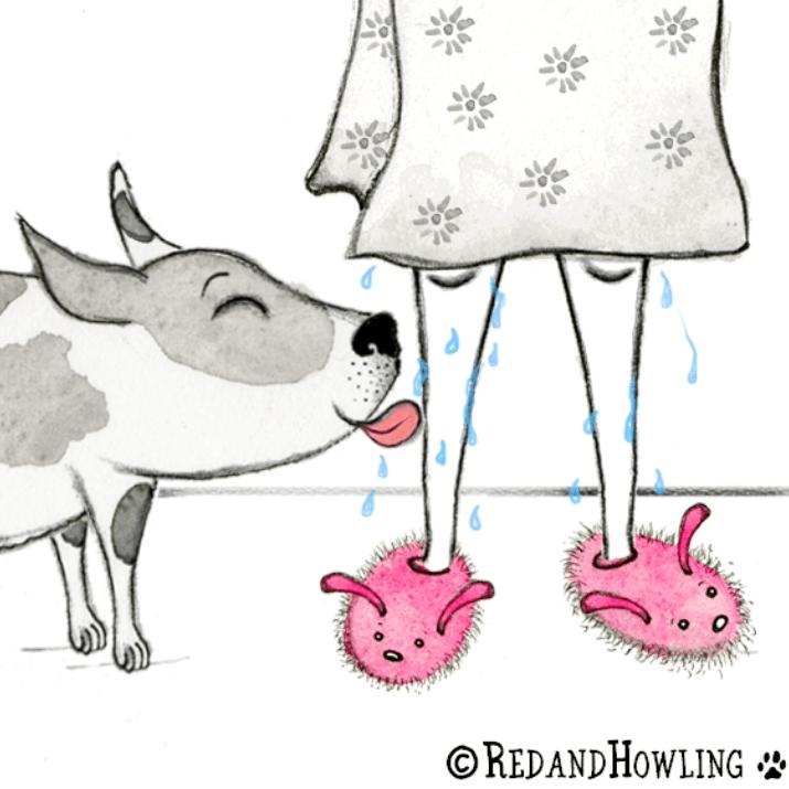 Shower Assistant