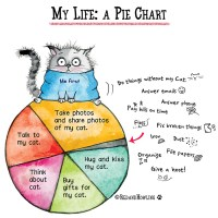 My Life: A Pie Chart (Cat Edition)