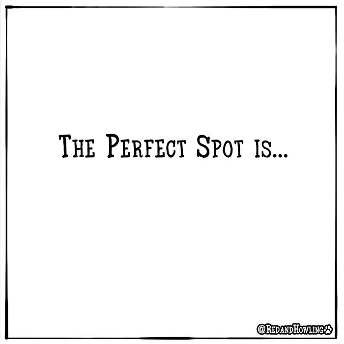 redandhowling_PerfectSpot10
