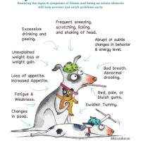 Do You Know When Your Fur Kids Are Sick? (free poster download)