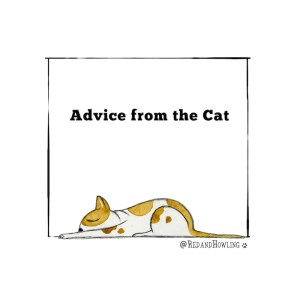 Advice from the Cat