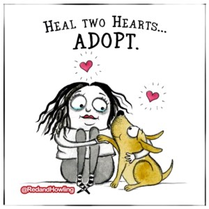 Heal Two Hearts… Adopt (GIF)