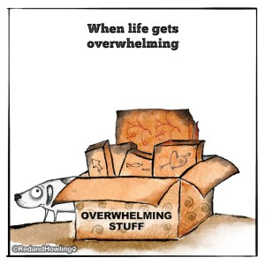 When life gets overwhelming…