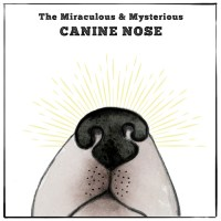 The Miraculous & Mysterious Canine Nose