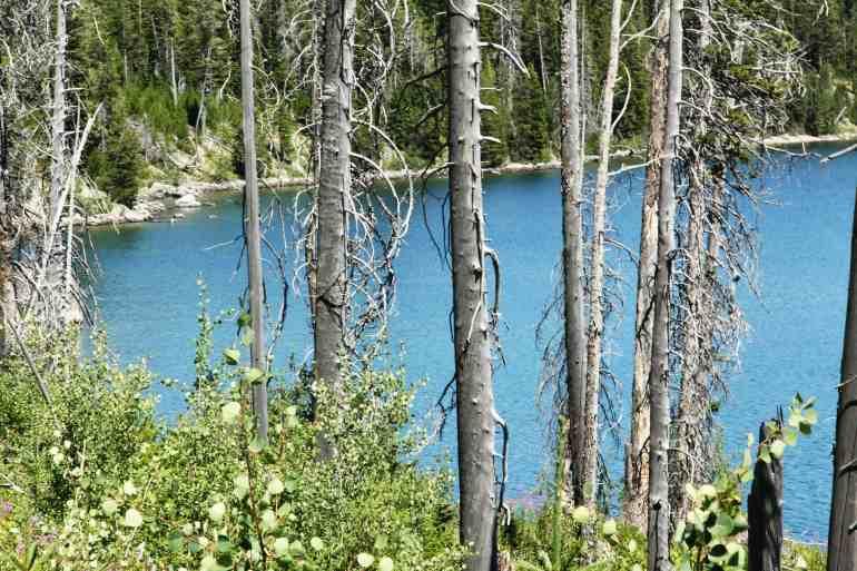 Hiking around Jenny Lake in the Tetons