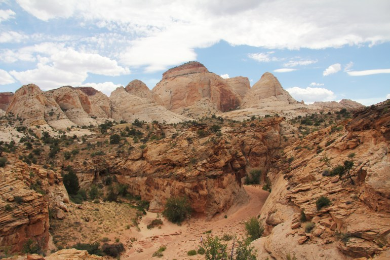 Capitol Reef tanks