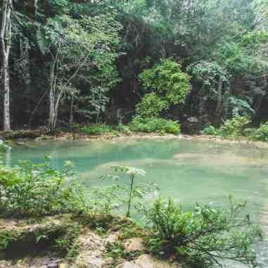 Monkey Falls San Ignacio Belize