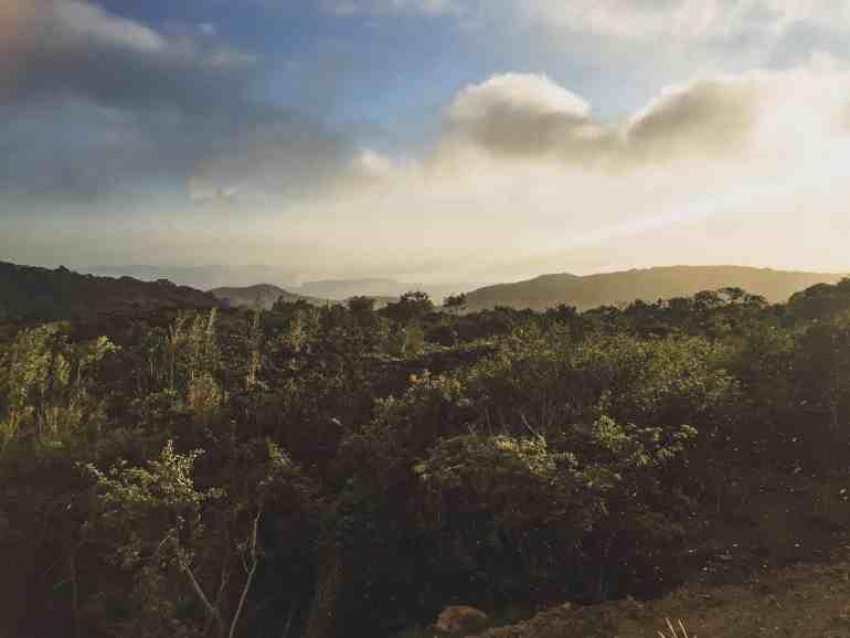 monteverde costa rica jungle tour