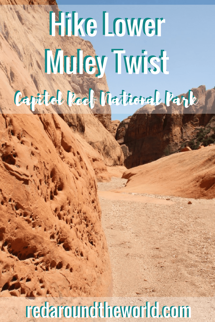 Hike Lower Muley Twist