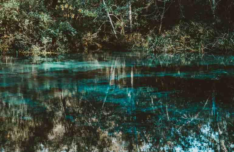 Ichetucknee springs state park florida
