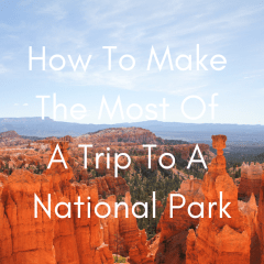 The Best National Parks To Visit In The Winter (7)